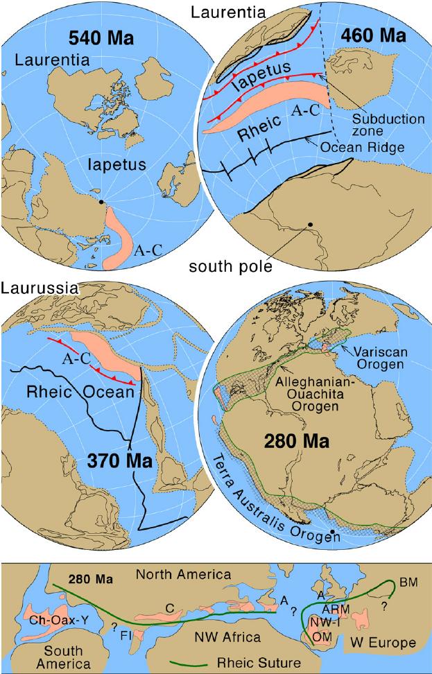 Pin by Kevin Schoppenhorst on Ediacaran spans 94 million years