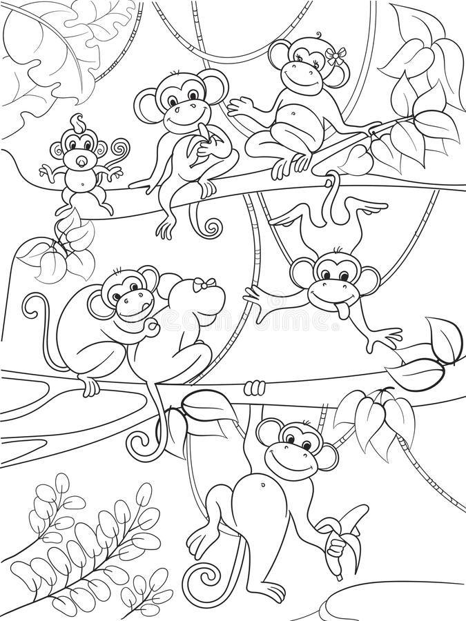 Resultado de imagen para imagenes de arboles para colgar monos ...
