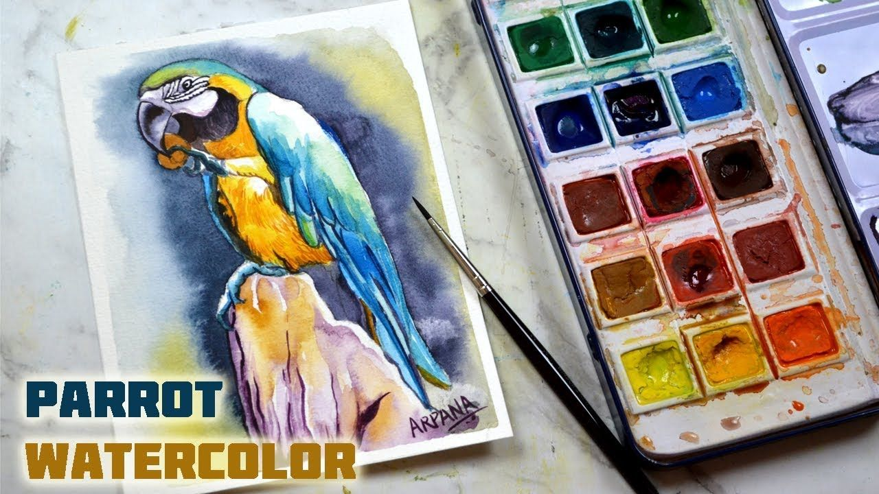 Watercolor Parrot Painting With Camlin Artist Watercolor Cakes