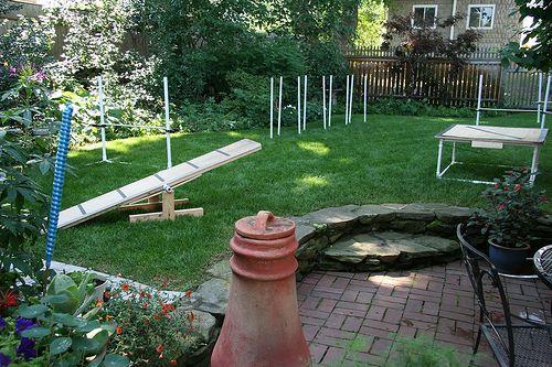 Etonnant Backyard Agility Course