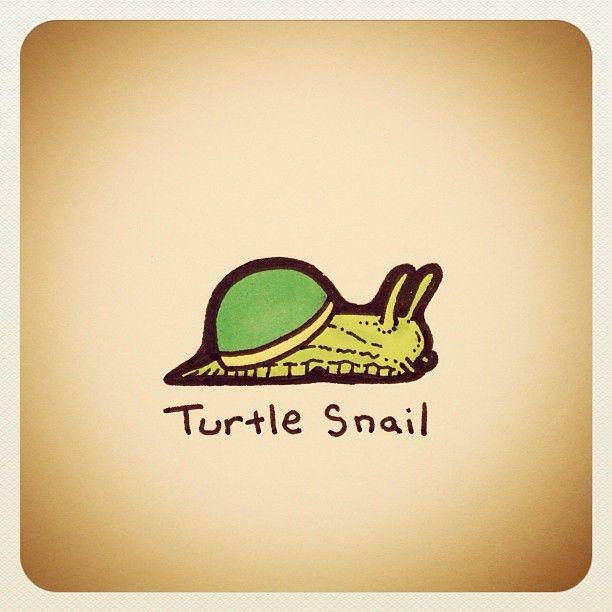 Turtle Snail - @turtlewayne- #webstagram