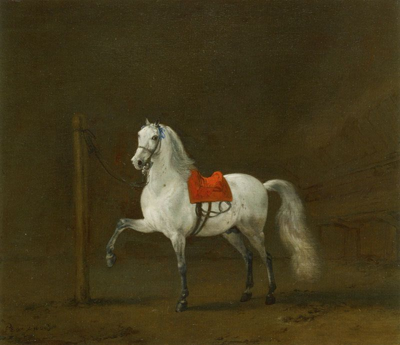 Philips Wouwerman - A Grey Horse in a Stable