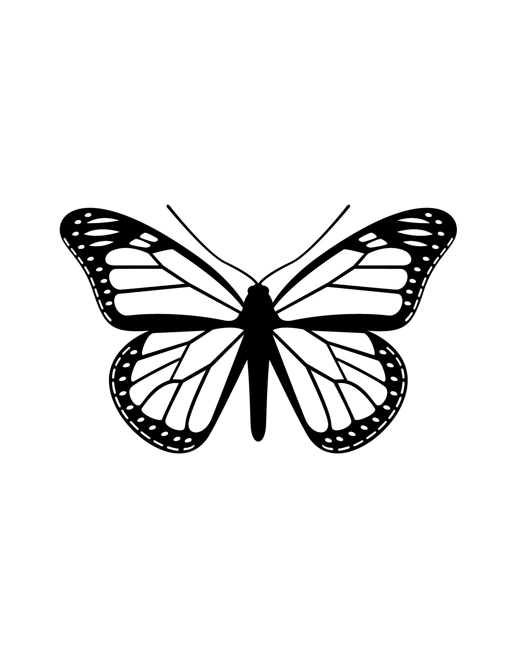 Jib Hunt Vector Silhouette Butterfly Butterfly Drawing Insect Coloring Pages White Butterfly Tattoo