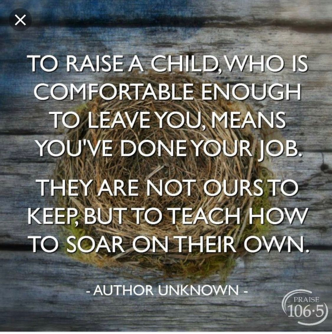Teach Your Children To Soar On Their Own Quotes For Kids Moving Away Quotes College Quotes