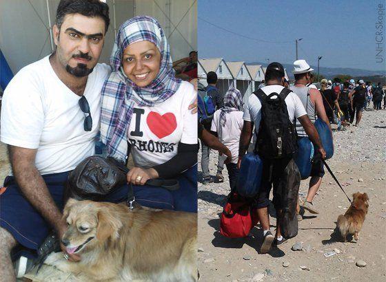 Refugiados que fugiram da guerra e não deixaram seus cães e gatos para trás.