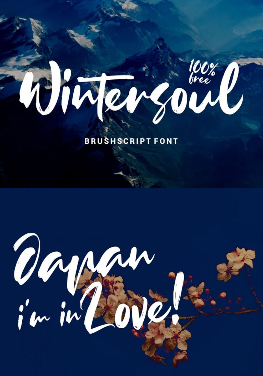 Wintersoul Handbrush Script Font Free For Commercial Use This