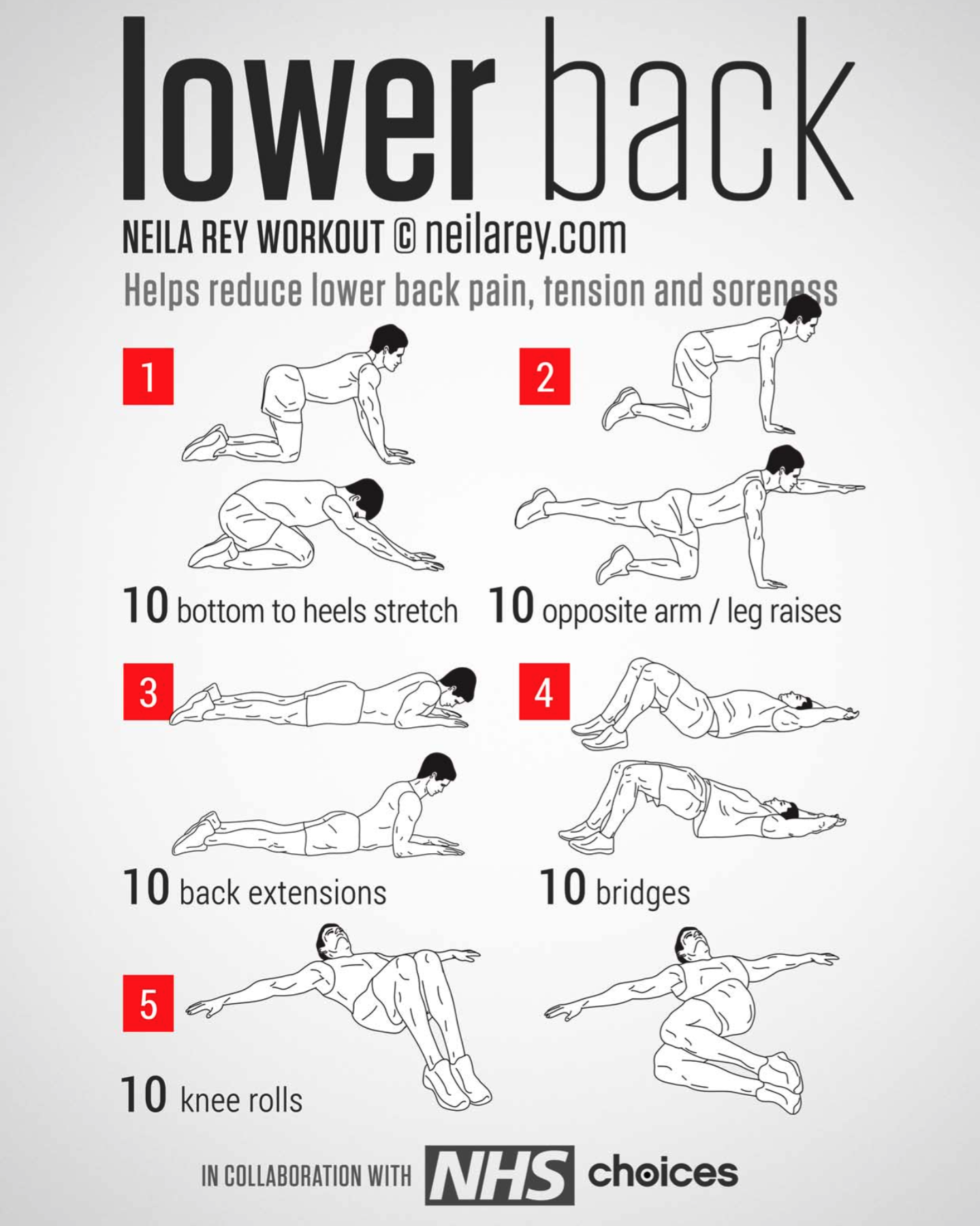 10 commandments of physical therapy - Lower Back