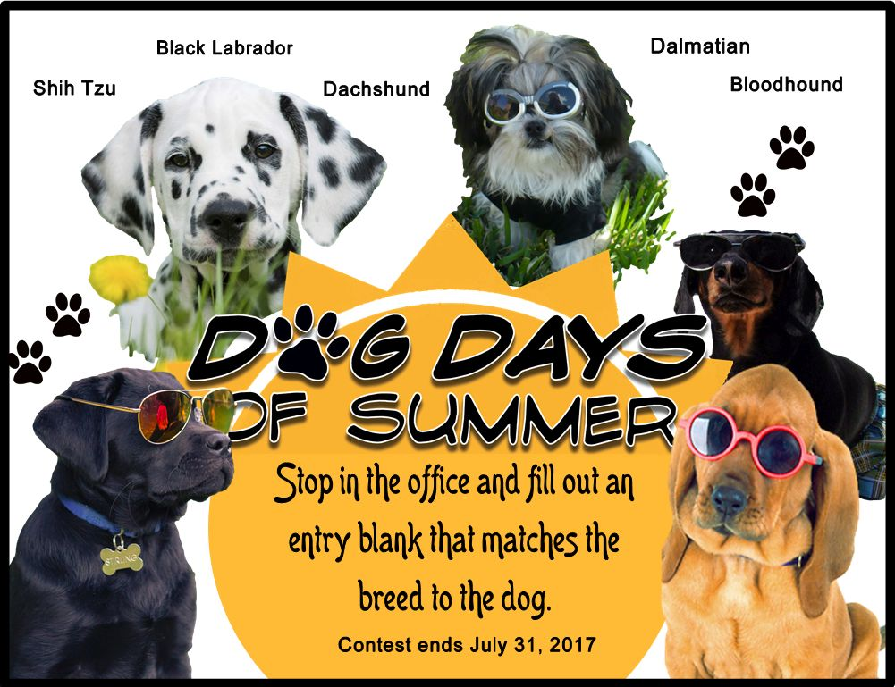 Dog Days Of Summer Contest Poster Contest Poster Summer Marketing Summer Contests