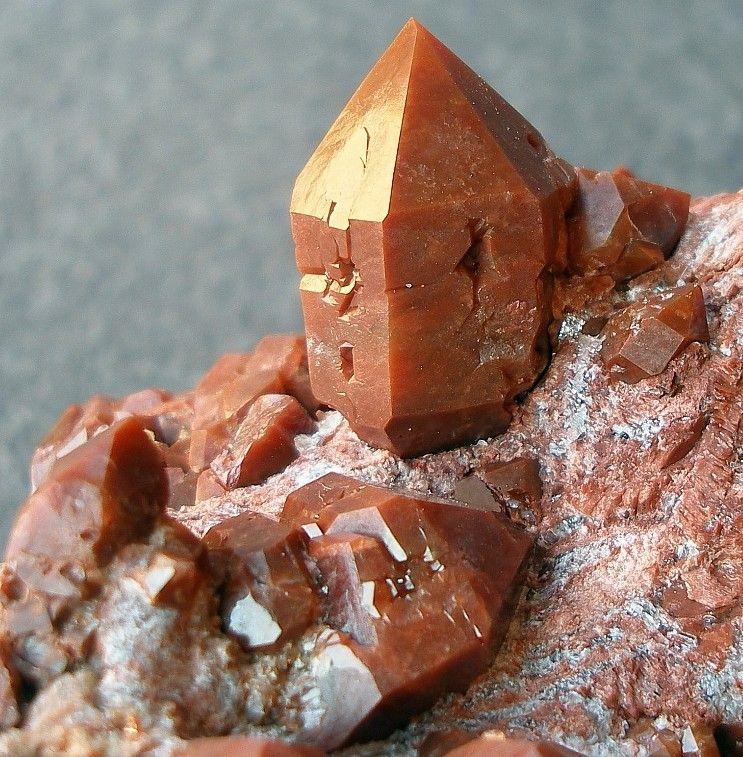 Quartz var. Eisenkiesel (hematoid quartz) in red gypsum matrix / Chella, Spain