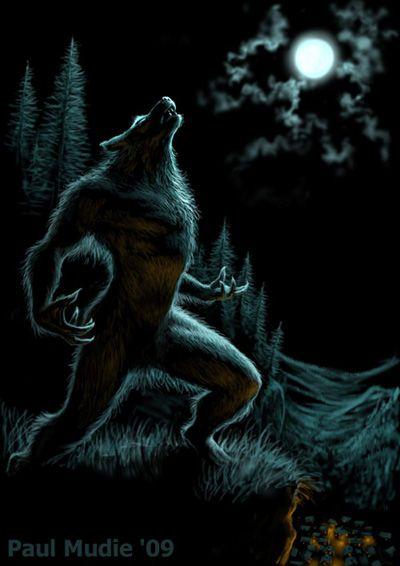 Illustrator - Gallery - Howl of the Werewolf | Werewolf, Werewolf art,  Vampires and werewolves