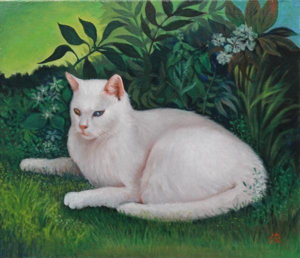 Lot Chine Ou Japon Ecole Moderne Portrait Du Chat Blanc Couche Aux Yeux Vairons Hst Dans La Vente Belle Vent Chat Blanc Illustration De Chat Asian