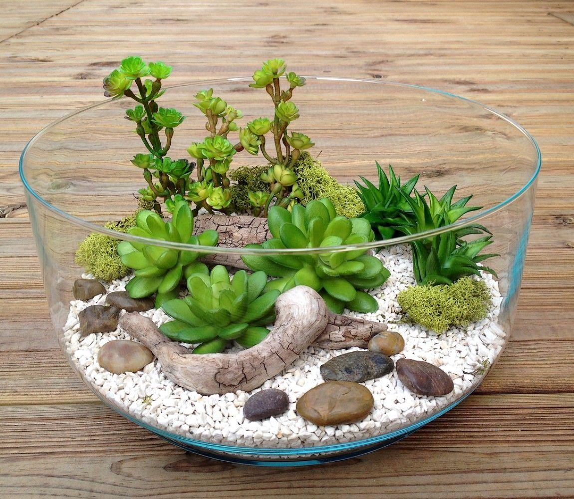 Terrarium Plantes Grasses Artificielles H13 D26 Brady Com Imagens