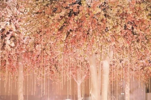 Hmmm Maybe In A Different Color If I Had A Bajillion Dollars Pink Trees Pink Blossom Cherry Blossom Wedding