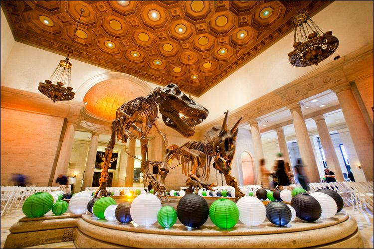 Natural History Museum Los Angeles - Magnificent nature and/or ...