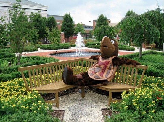 Umd Chillin University Of Maryland Maryland College Park