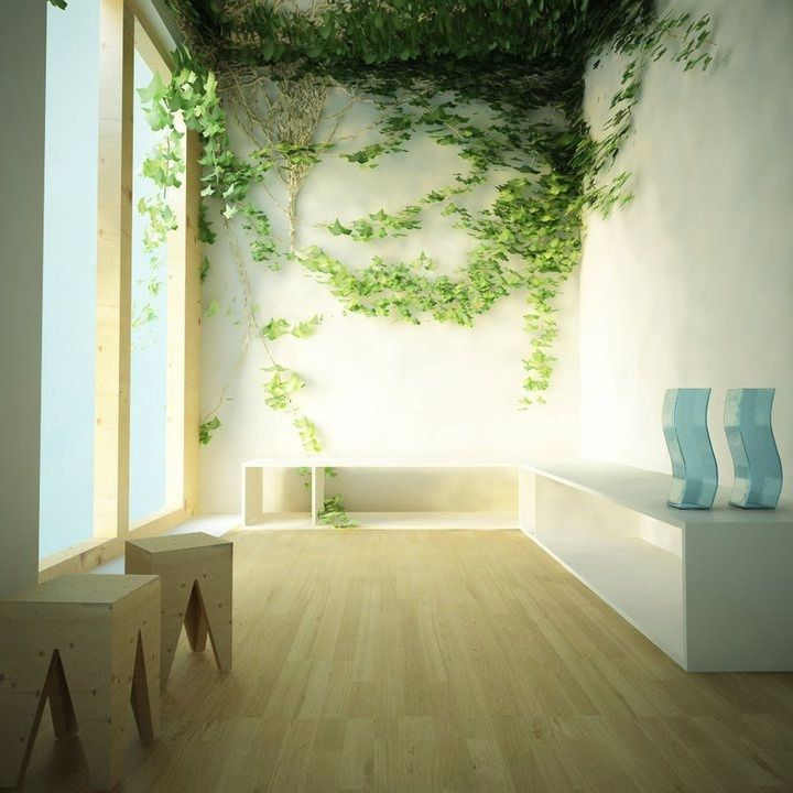 Indoor Wall Decorating Ideas Part - 44: Unusual Wall Art Design For Home: Vabolous Room With Indoor Climbing Plants  White Wall Chairs Shelves Bay Window And Wooden Floor