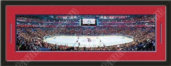 This framed large Montreal Canadiens stadium panoramic, double matted in team colors to 39 x 13.5 inches.  The lines show the bottom mat color. $129.99   @ ArtandMore.com