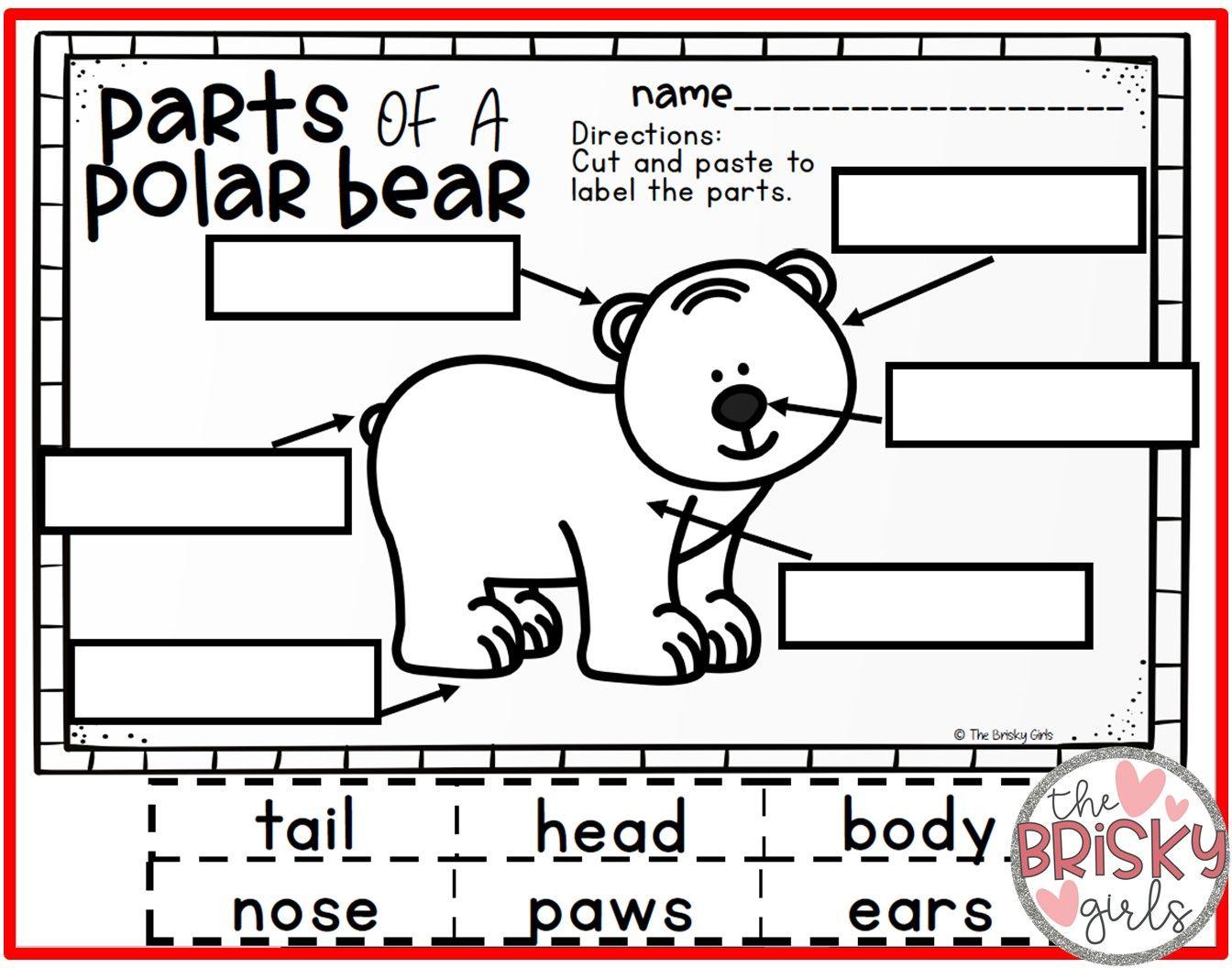 Polar Bears Kindergarten In With Images