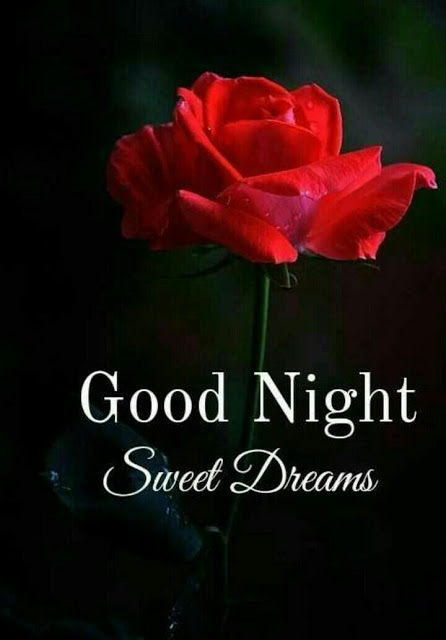 Good Night Images For Whatsapp Free Download Hd Wallpaper Pictures Photos Of Good Night Good Night Love Images Good Night Image Good Night Sweet Dreams
