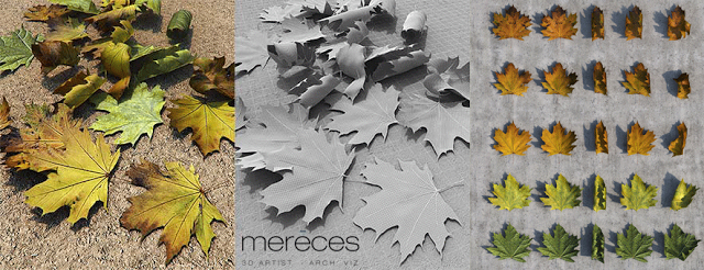 3D Free Models Autumn Leaves Pack by Sergio Mereces  Maxwell 3D