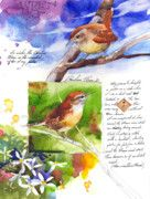 Stan Fellows Art - May 20 Wren by Stan Fellows   Fine Art