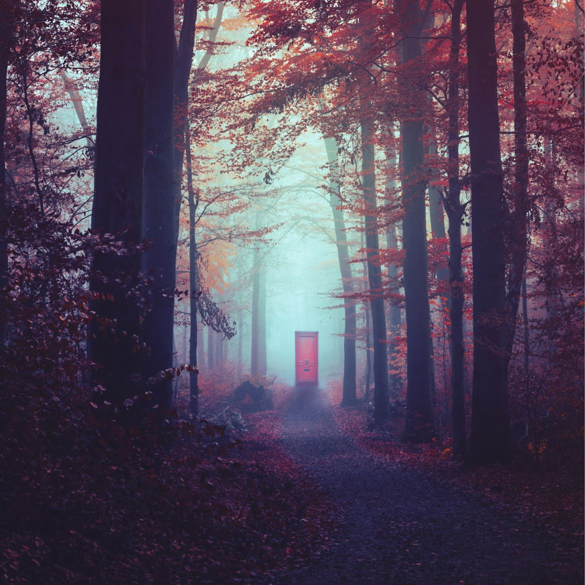 Photograph The Secret Doorway by Nikita Gill on 500px