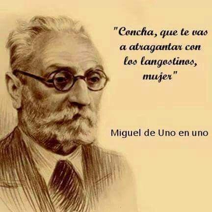 Miguel de Uno en Uno