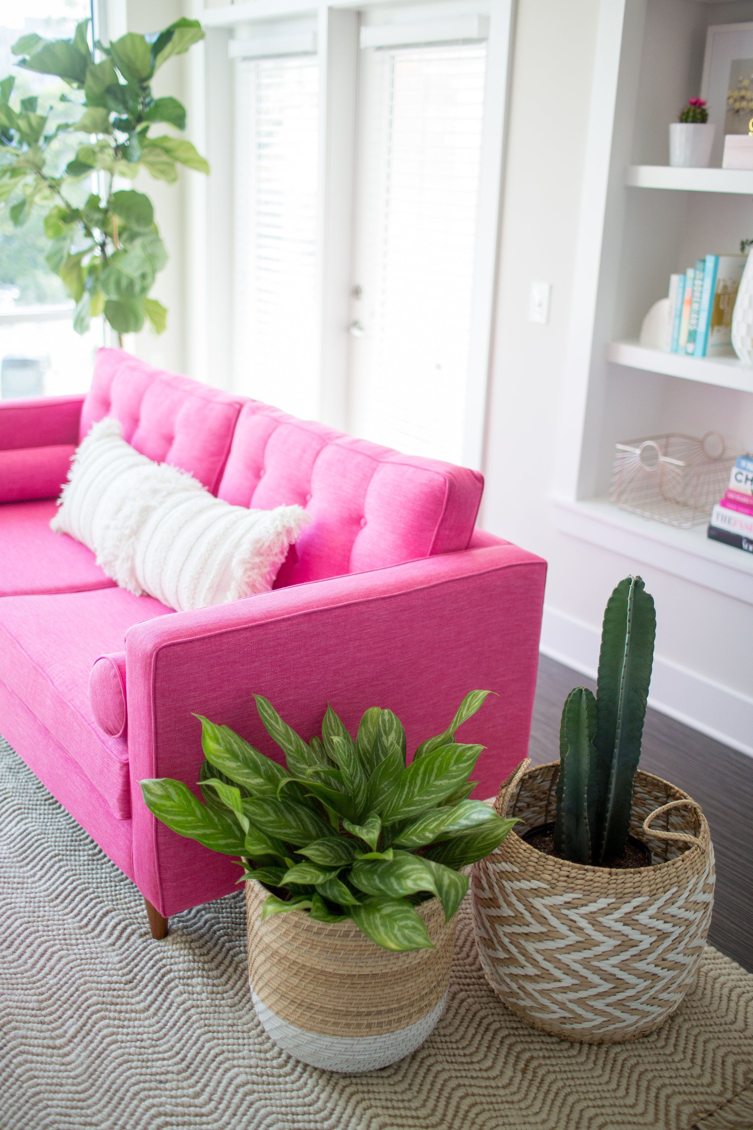 Photography By Paige Winn Photo Braxton Pink Sofa: JoyBird Dreams Really Do  Come True, This JoyBird Loveseat Is Living Proof!