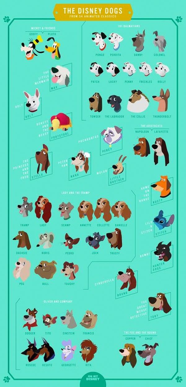 Every Dog from Disney Animated Classics Compiled into One