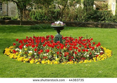 Flower Bed In A Formal Garden Stock Photo 44383735 Shutterstock Garden Flower Beds Flower Beds Beautiful Flowers Garden