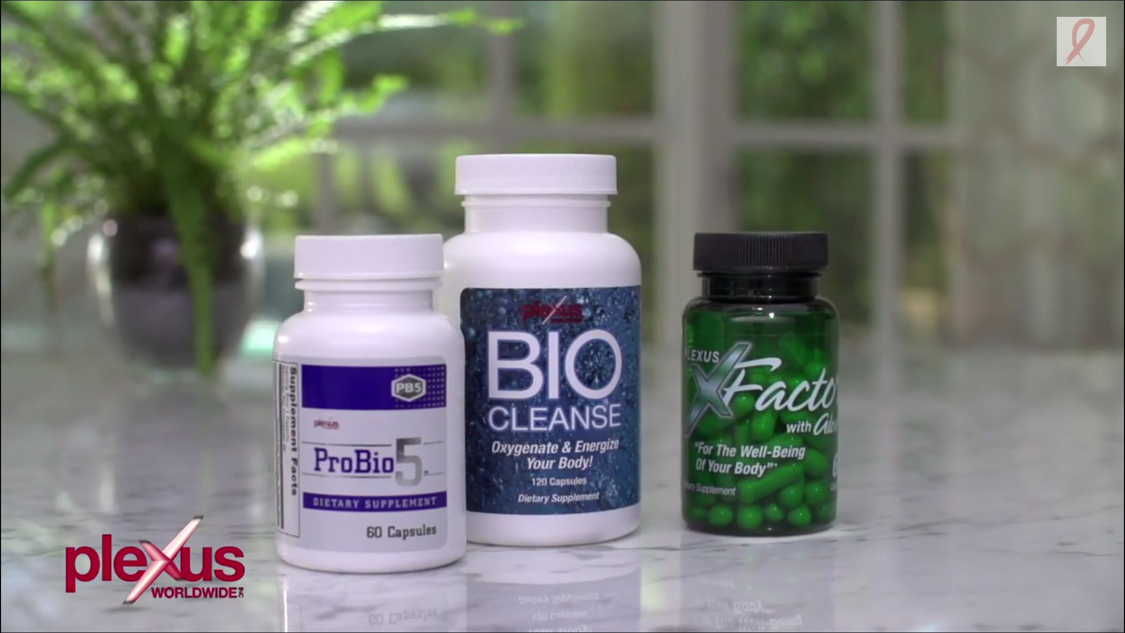 Try our Companion products today - with a 60 day money back guarantee on ALL products you have nothing to lose but IBS, acid reflux, migraines, lack of energy, mood swings, weight, and much more! www.plexusstacy.com