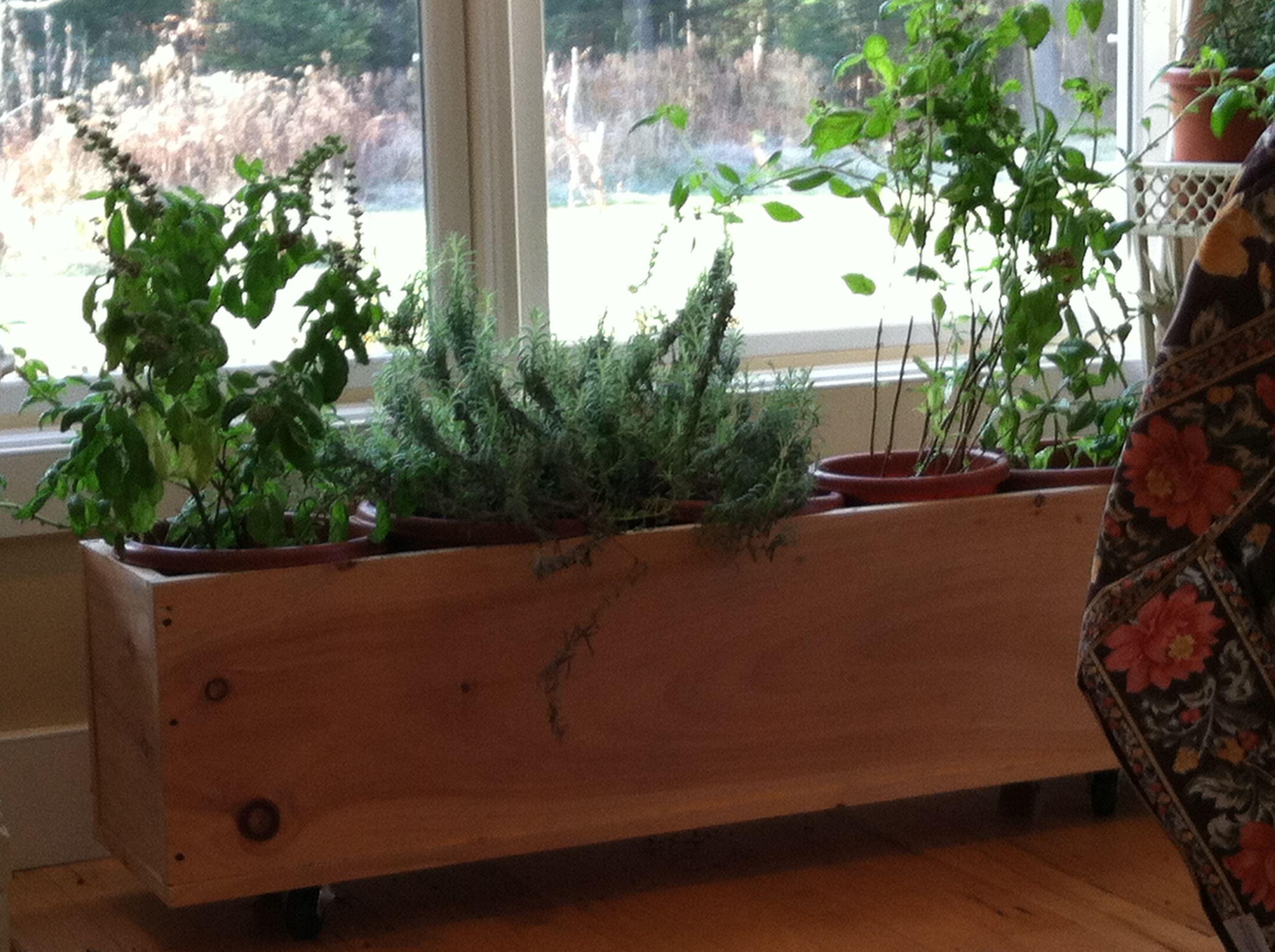 Portable Indoor Herb Garden Indoor Herb Garden Herbs 640 x 480