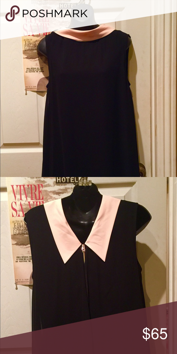 715ae73eee Ted Baker Dress Ted Baker cute dress worn one time. Size 3. Black silk  chiffon exterior fully lined. Baby pink collar. Ted Baker London Dresses  Midi