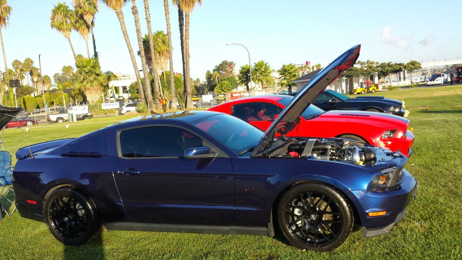 2011 ford mustang gt coupe 2 door for sale muscle cars