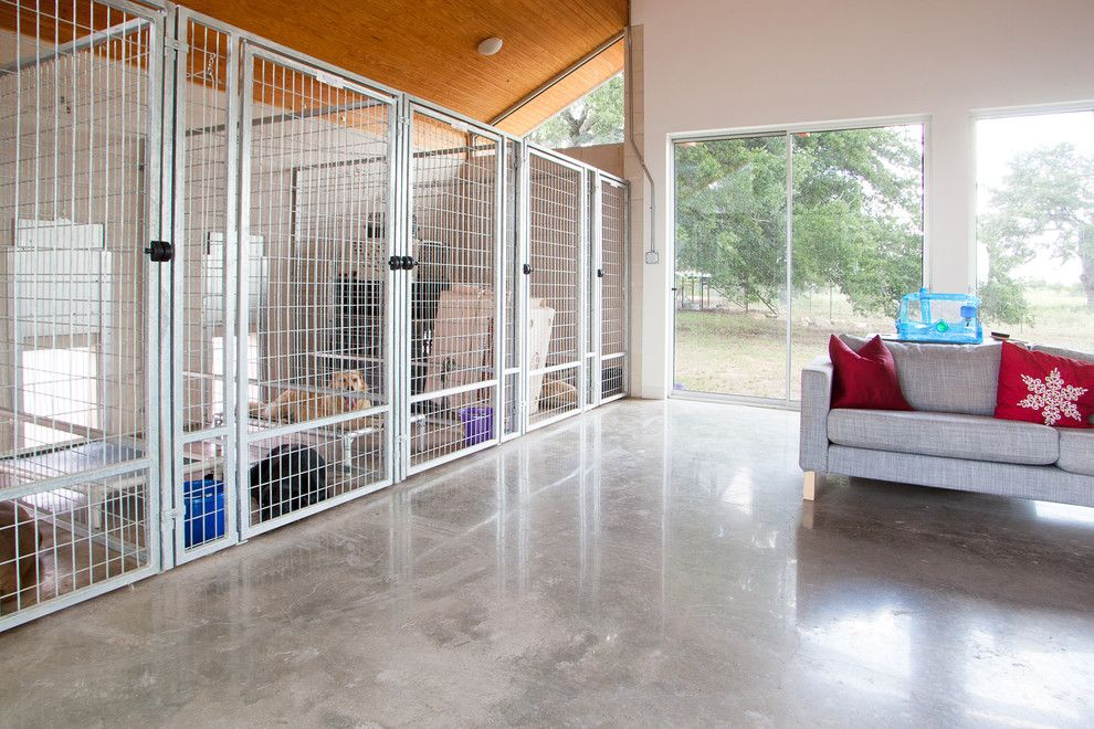chic indoor dog kennels in modern austin with dog door. Black Bedroom Furniture Sets. Home Design Ideas