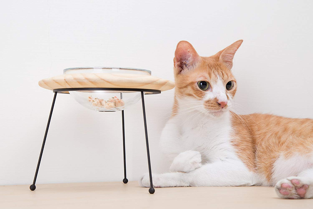 myzoo outerspace 宠物碗 宠物用品 Cat tree plans