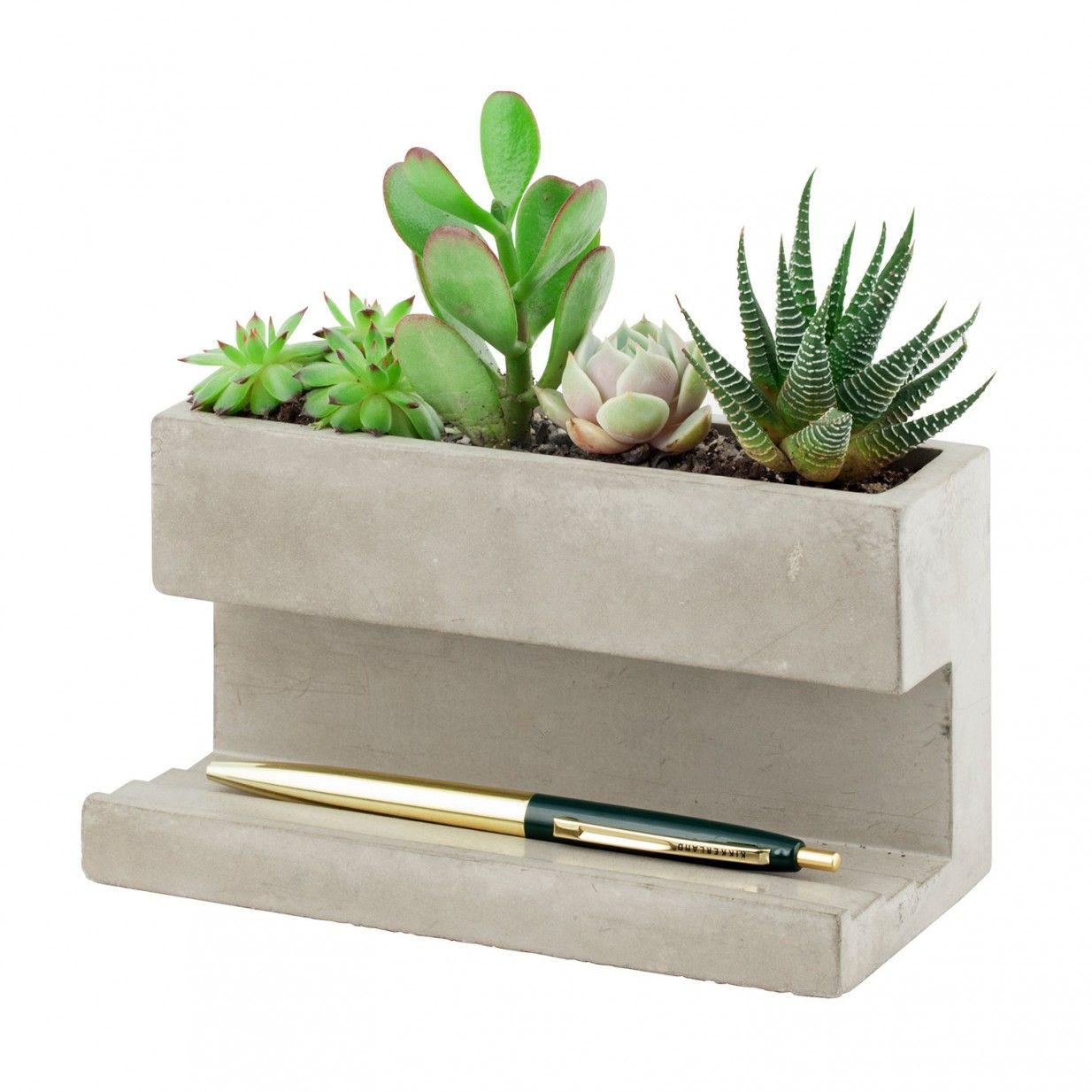 Großer Concrete Pflanztopf Kikkerland Desktop planter