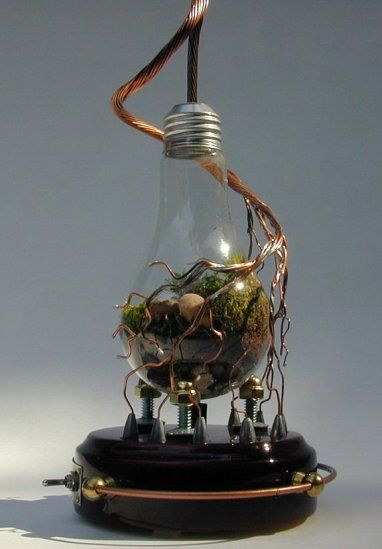 Light Bulb Terrarium Steam Punk Style Recycle Your Blown Out Light Bulbs The Hardware Way Steampunk Lighting Light Bulb Terrarium Steampunk Gadgets