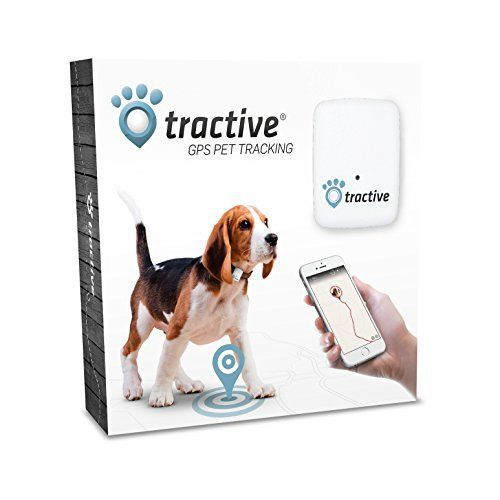Dog  C B Review Tractive Gps Pet Tracker