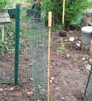 How To Build A Cheap Temporary Vegetable Garden Fence With