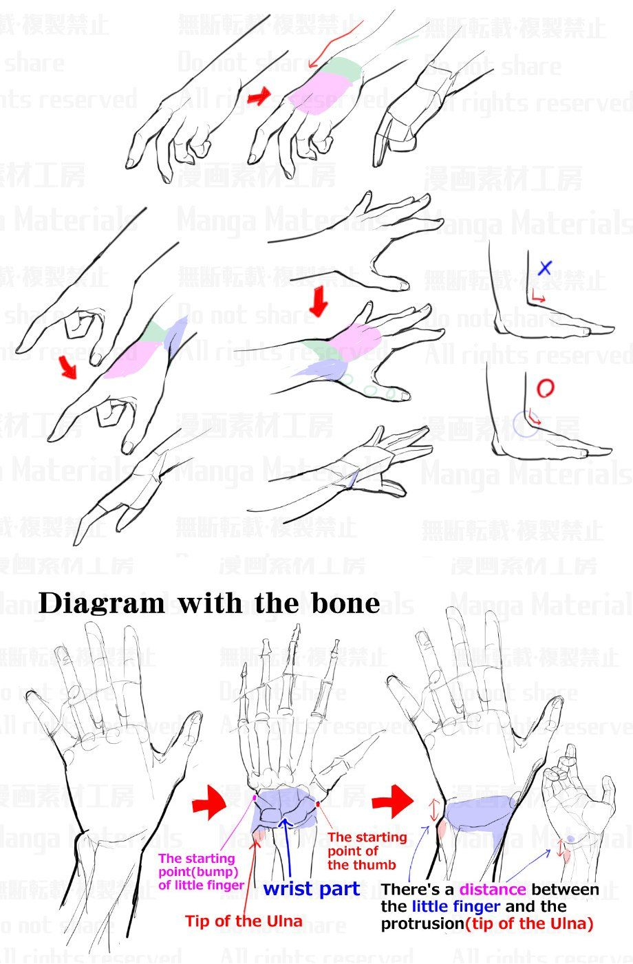 Mangamaterials Tesco On Twitter Structure Of The Wrist The Reason Why Wrist Is Difficult How To Draw Hands Book Making Manga Drawing Tutorials