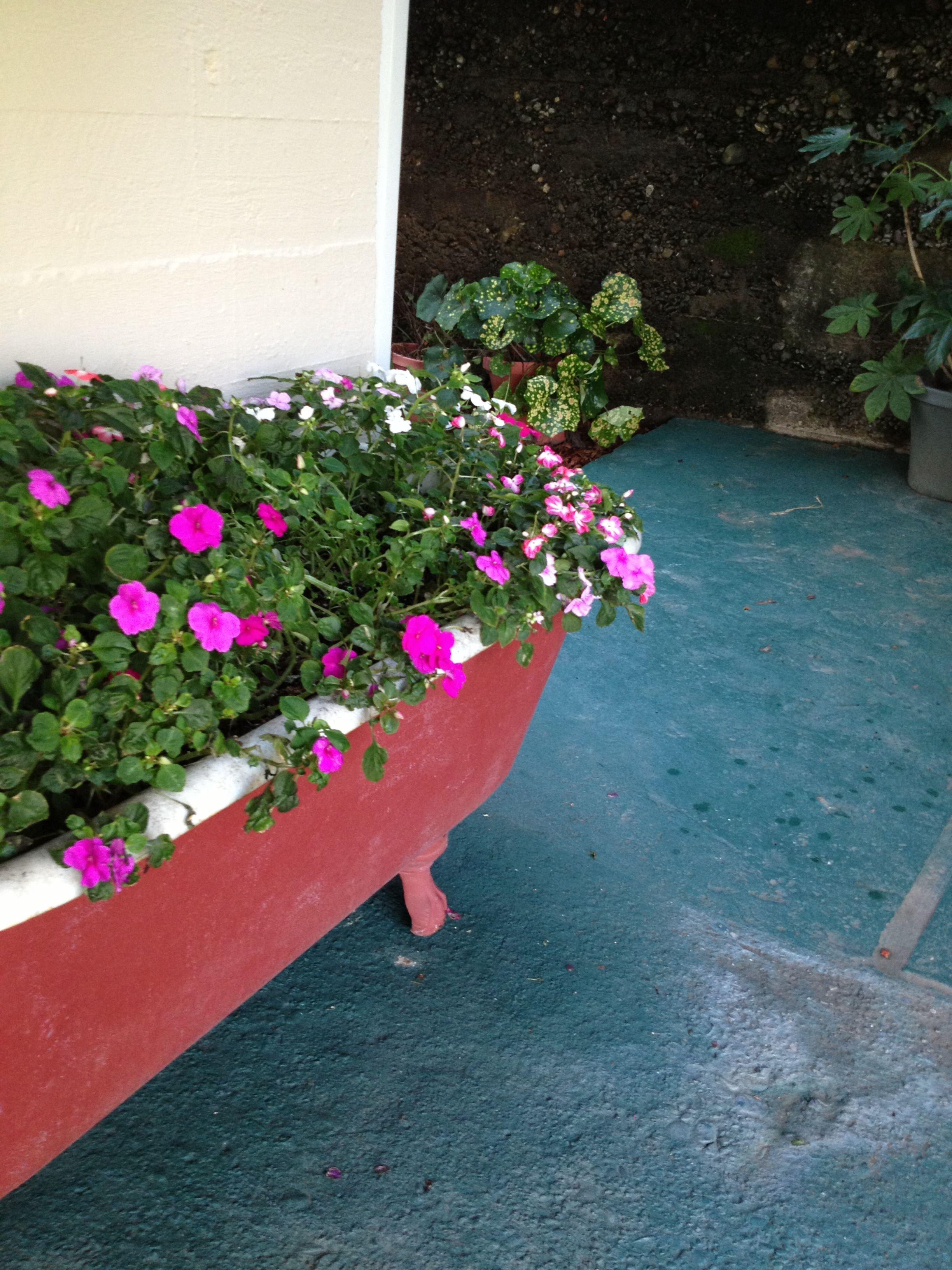 Old bathtub used as planter. | old bathtubs | Pinterest | Bathtubs ...