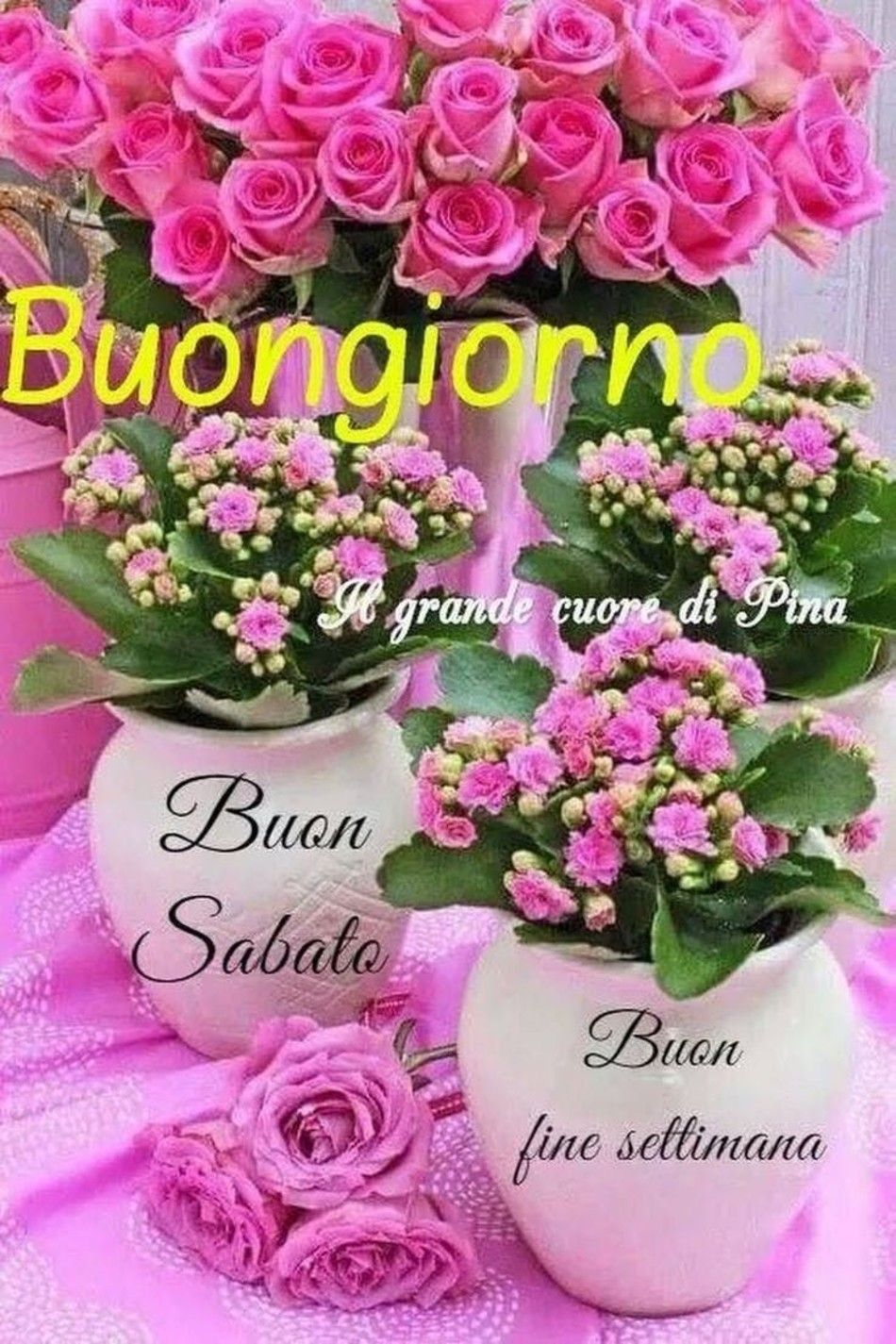 Belle Immagini Buon Sabato Con I Fiori 28 Buongiorno