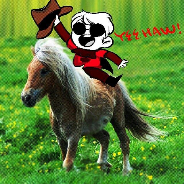 Dave Strider the pony rider