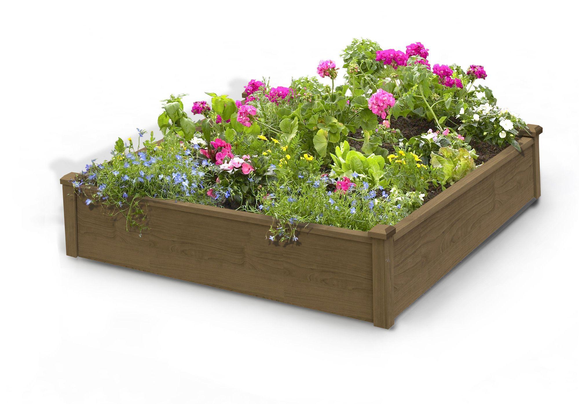Fir Wood Raised Garden Raised garden bed kits, Building