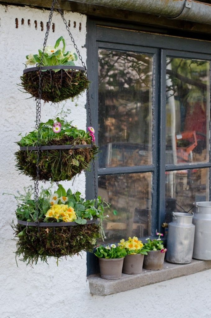 blumenampel aus altem obstkorb f r den garten selber basteln und bepflanzen garten. Black Bedroom Furniture Sets. Home Design Ideas