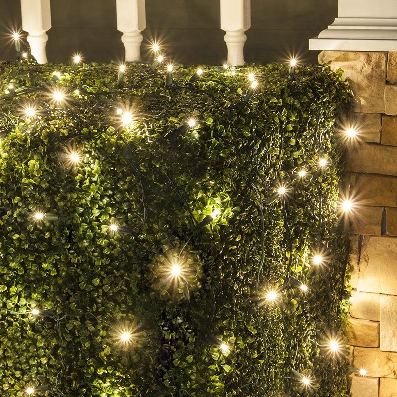 easy to use led net lights with warm white bulbs on a x net on a green wire led net lights and trunk wraps give outdoor christmas lights a professoinal