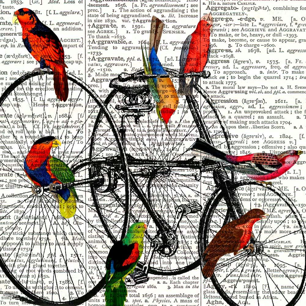 Parrots on old velocipede Print Dictionary art Print by PrintLand