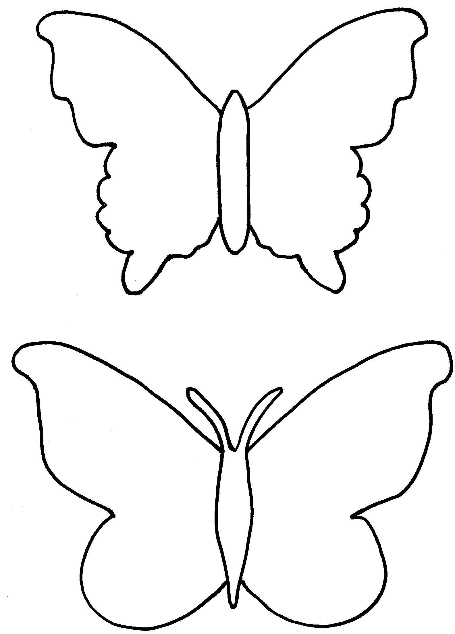 Butterfly Outline Coloring Pages   Priroda    Butterfly