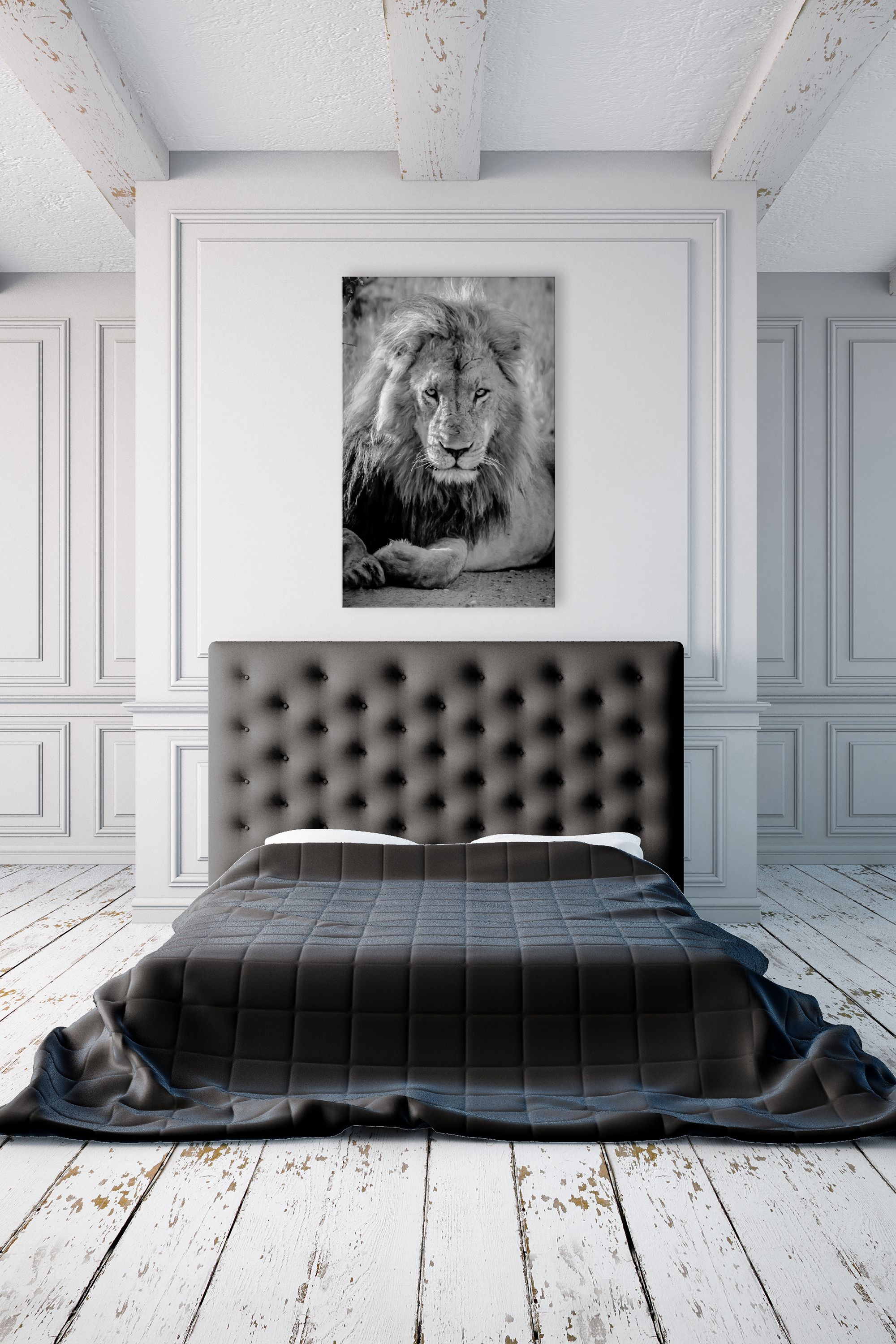 Stunning black and white photography lion art metal print for black bedroom home decor